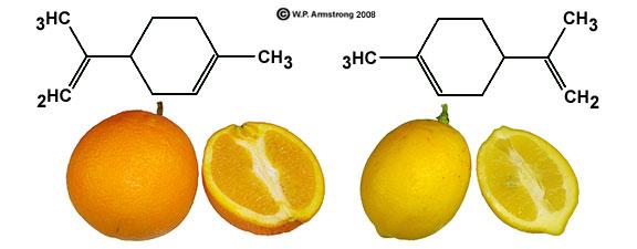 L-limonen (till vänster) smakar apelsin, medan D-limonen (till höger) smakar citron.