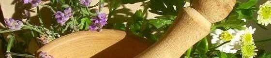 Plantae medicinales
